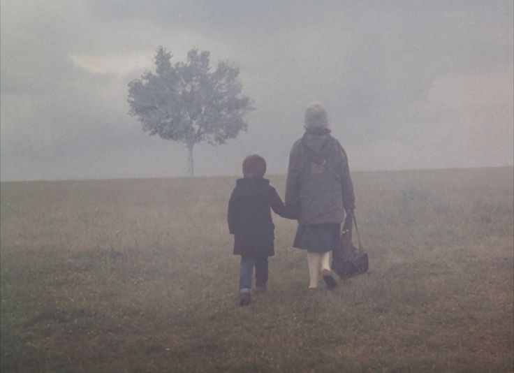Landscape in the Mist (Τοπίο στην ομίχλη / Topio stin omichli), 1988, Directed by Theo Angelopoulos / Cinematography by Giorgos Arvanitis