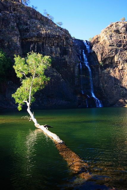 Gunlom Falls in Kakadu National Park, Australia (by gsamie).