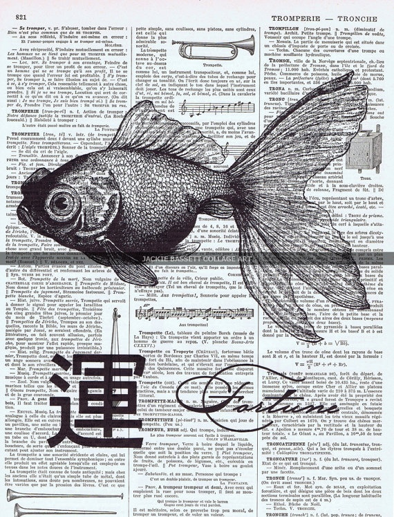 She's pretty. Asian Fortune Fish collage art by Jackie Bassett.