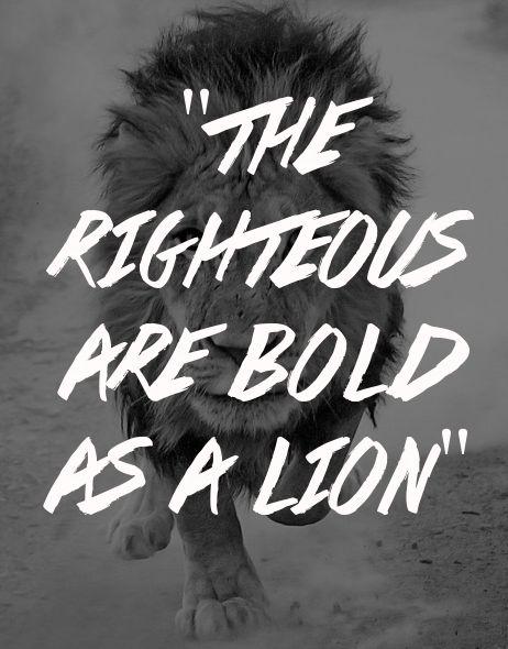 spiritualinspiration:  The wicked flee when no one pursues, but the righteous are bold as a lion (Proverbs 28:1, NKJV.)  As a believer in Je...