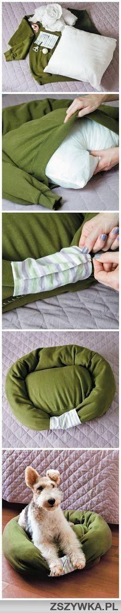 Un vieux pull se transforme en panier pour chien!