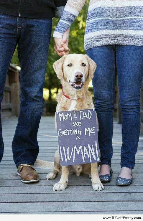 Adorable baby announcement