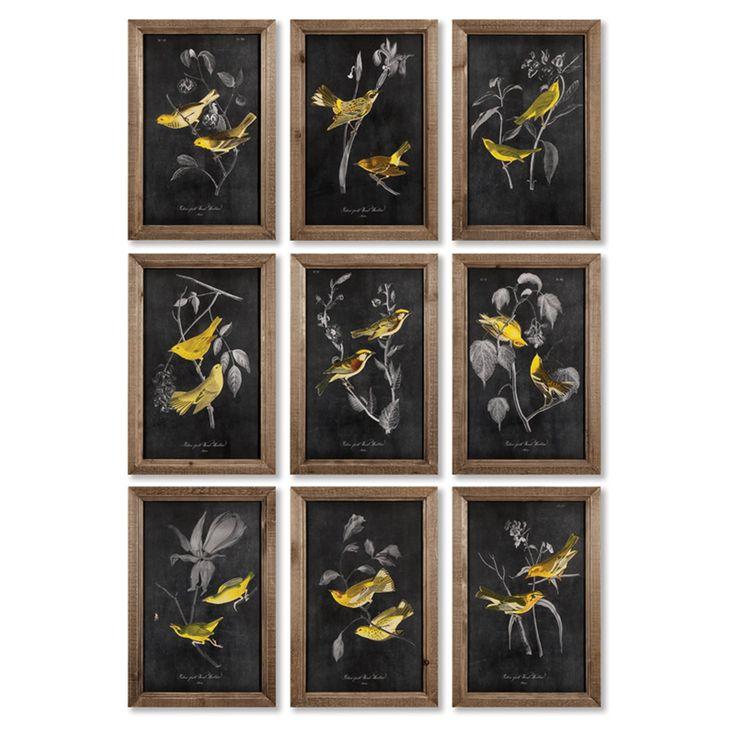 Napa Home and Garden 9 Piece Yellow Bird Study Wall Art