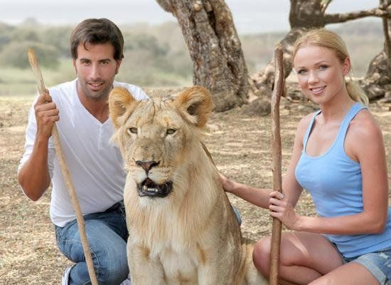 Lion lovers
