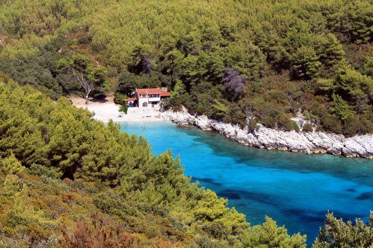 Korčula Apartmanok a tenger mellett - 9234 - Szállás Horvátország   Adriatic.hr