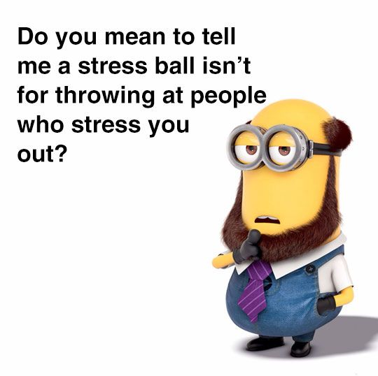 Do you mean to tell me a stress ball isn't for throwing at people who stress you out? - Mr. Minion