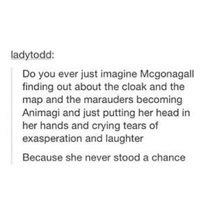 McGonagall and the Marauders. Harry Potter