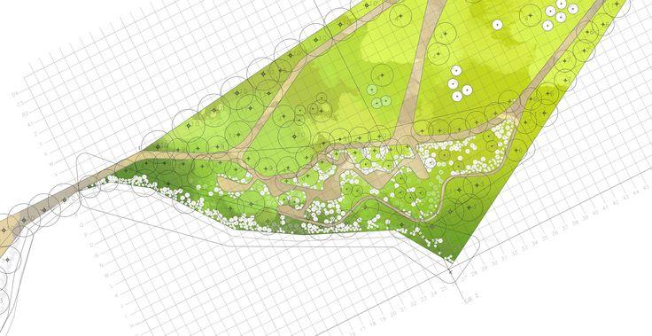 Lomas de Hidronor | 7Ha | Detalle de plantacion