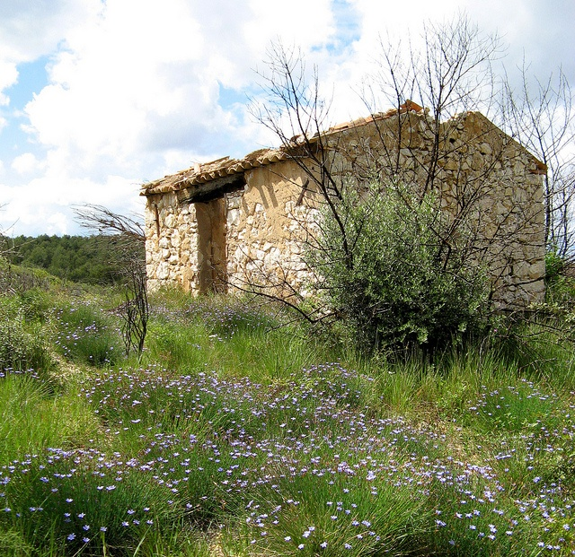 This photo was taken on May 2, 2007 in Velaux, Provence-Alpes-Cote d'Azur, FR. Cabanon et fleurs à Velaux by myvalleylil1, via Flickr