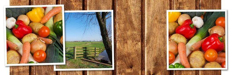 www.lekkersdichtbij.nl (rechtstreeks kopen bij de boer)