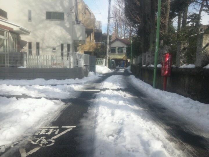 大雪の二日後