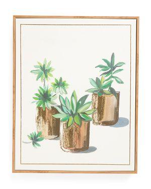 16x20 Framed Succulent Garden Canvas Wall Art