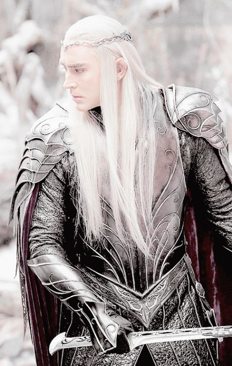 Wonderful armour detail!