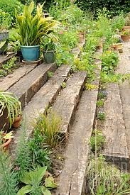 rustic wood sleepers garden - Google Search
