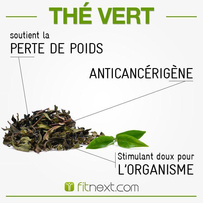 LE THÉ VERT : Pourquoi ne pas commencer la journée par une bonne tasse de thé vert ?   Riche en polyphénols et catéchines qui préviennent l'apparition de cancers et de maladie cardio-vasculaires.❤  C'est un stimulant doux : il augmente la concentration et l'énergie durablement.