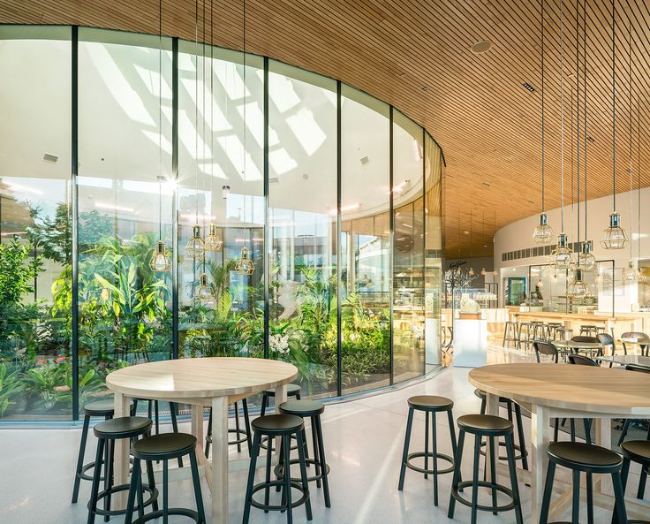 best 20+ cafeteria design ideas on pinterest | coffee shop design