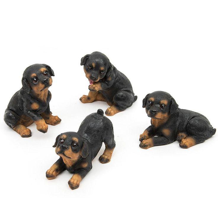 4pcs rottweiler dogs landscape puppy miniature