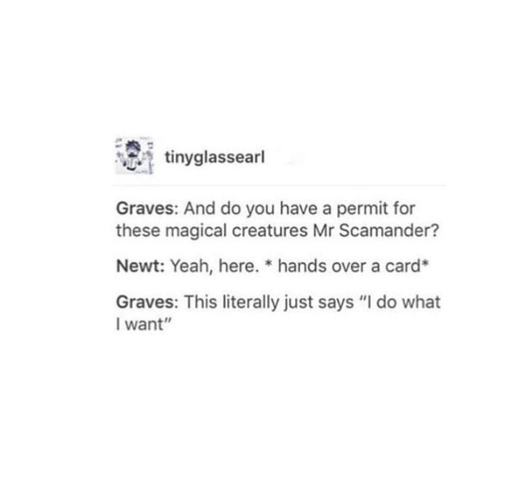 I love these sassy Newt posts
