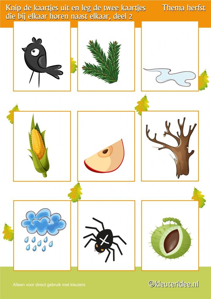 Leg twee kaartjes die bij elkaar horen naast elkaar deel 2 , thema herfst voor kleuters, juf Petra van kleuteridee, Preschool autumn theme, free printable