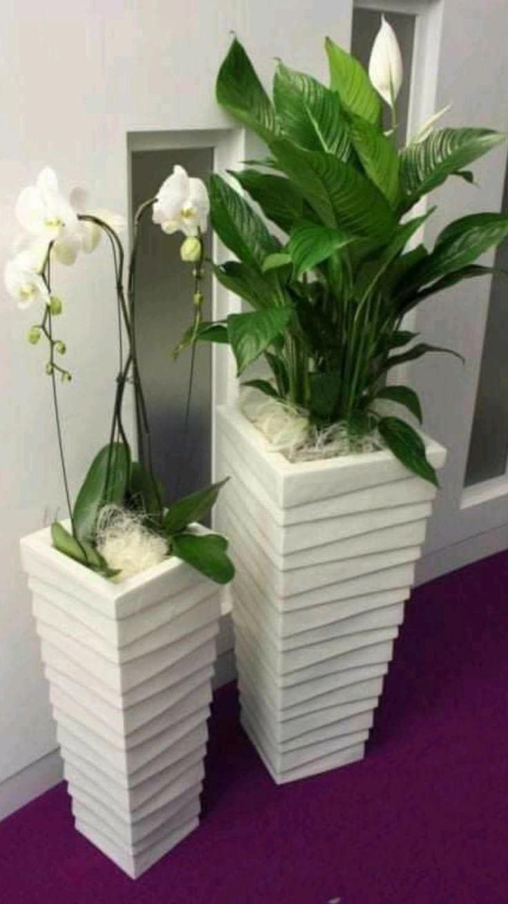 Peace Lily, Artificial Plant Wall, Artificial Flowers, House Plants Decor, Plant Decor, Decoration Plante, Office Plants, Deco Floral, Interior Plants