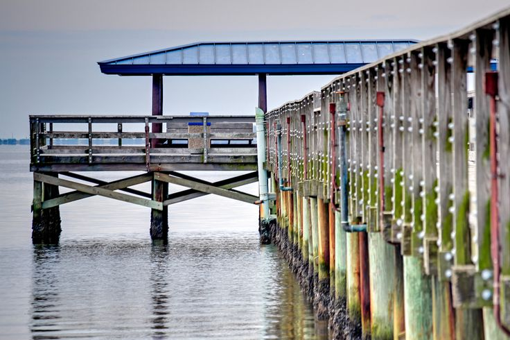 Pier at Safety Harbor, Florida