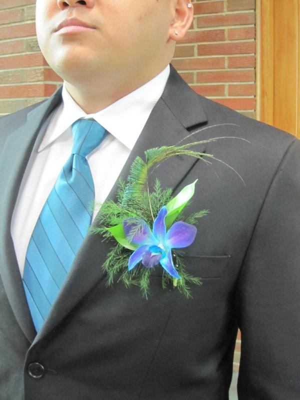 Peacock Tail & Blue Dendrobium Orchid: Peacock Tail, Cecilia Flowers, Boutonniere