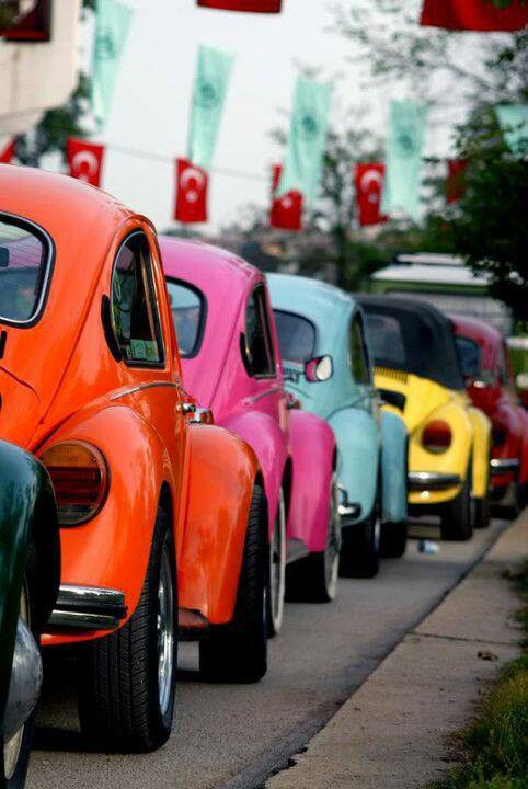 VW beetle is Known as a Kaplumbağa - turtle - in Turkey. Picture from a A VW festival in Turkey