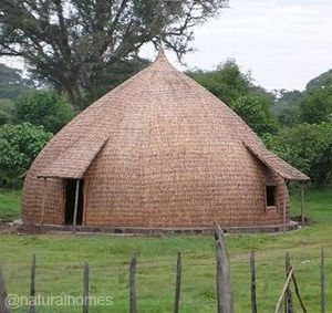 Bamboo roundhouse by the Sidama people of Ethiopia