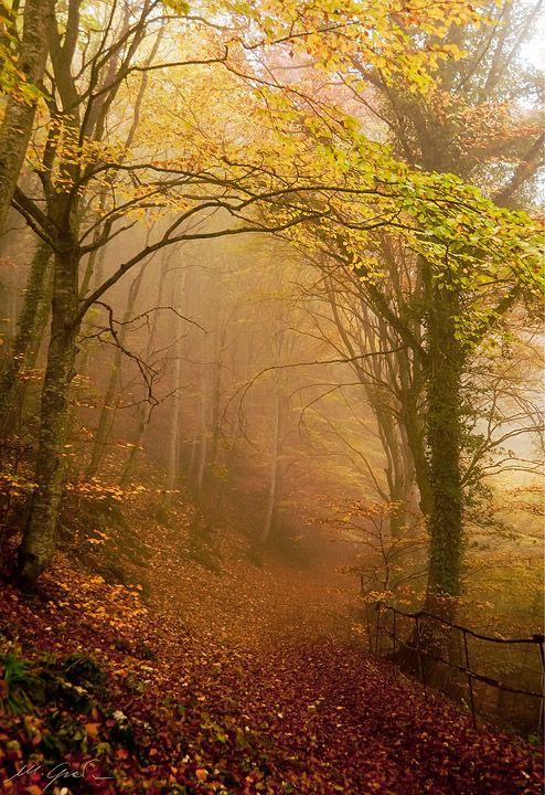 Elf's Path, Sibillini Mounts, Marche, Italy