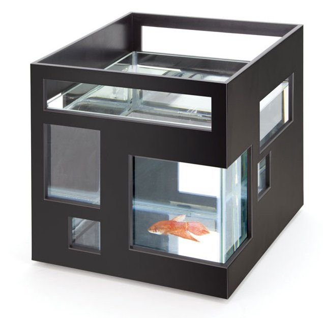 If he loves fishes and has a chic-looking apartment, you might want to invest in this modern fish hotel ($35).