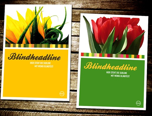 7 best food brochure ideas images on Pinterest Books, Dessert - restarunt brochure