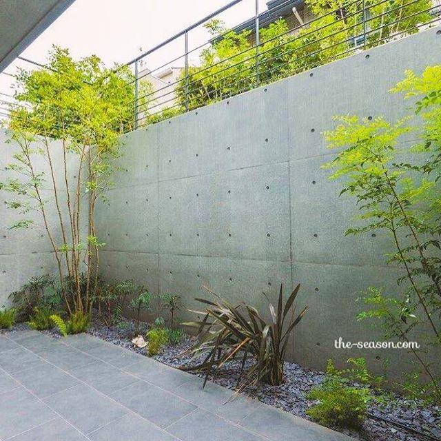 コンクリートの無機質さと緑の潤い。まるで美術館の庭園を彷彿させるランドリーエリアが、家の中にあってもいいと思う。 ・ #ザシーズン #庭 #お庭 #ガーデン #ガーデンデザイン #暮らし #暮らしを楽しむ #家 #緑のある暮らし #緑 #ザシーズン世田谷 #楢舘理佐 #新築 #リフォーム #リノベーション #日々の暮らし #ランドリー #garden #gardendesign #picture #photo #green #laundry #modern #モダン #シンプルモダン #かっこいい #家づくり #landscape #素敵