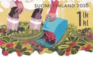 Berry picking, Jokamiehen oikeudet, Finland 2016