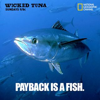Love me some Wicked Tuna!