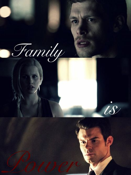 vampire diaries quotes elijah - photo #14