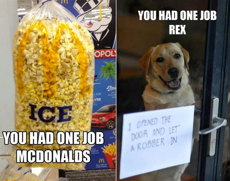 'You had one job' meme: Hilarious fail blunders make ...
