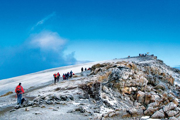 """Nearly 90 percent of Mount Kilimanjaro climbers stick to the Marangu route. This five-day round-trip to the 19,340-foot summit has become so popular that locals have dubbed it """"the Coca-Cola trail"""" (said beverage is hawked from huts along the way). To bring an edge back to Africa's highest peak, Abercrombie & Kent (which first led clients to the top in 1966) has launched its new Extreme Adventure Kilimanjaro climb—a nine-day trek on the Lemosho Route, the longest and remotest traverse."""