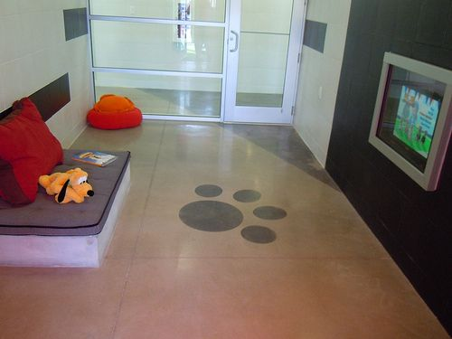 Disney dog hotel kennel idea pinterest for Dog boarding at disney world