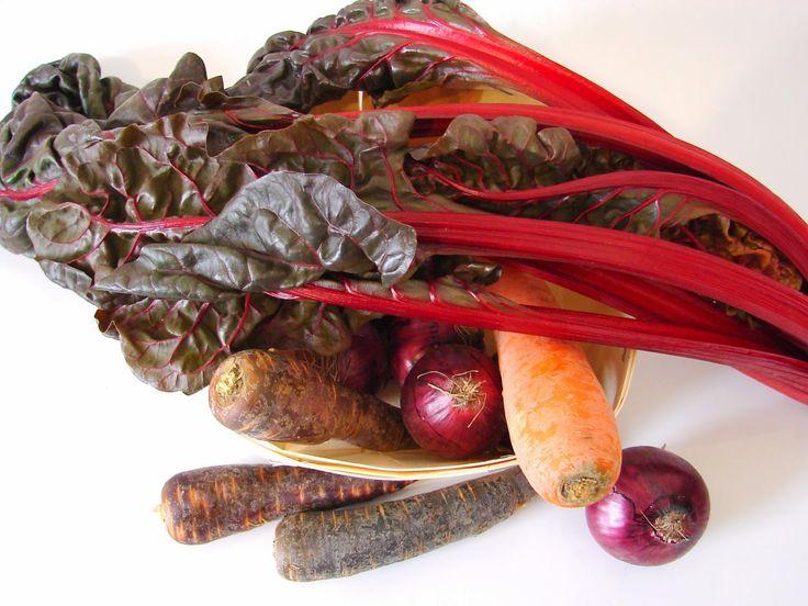Sopa de cenoura roxa e acelgas vermelhas