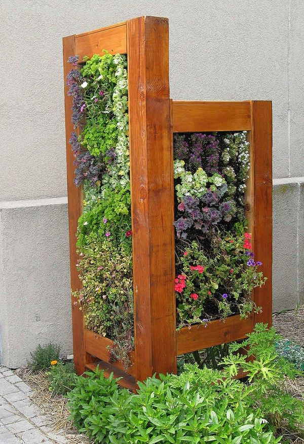 framed vertical garden to hide a rubbish bin.