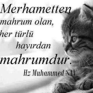 Merhamet en Güzel sıfatınız olsun..