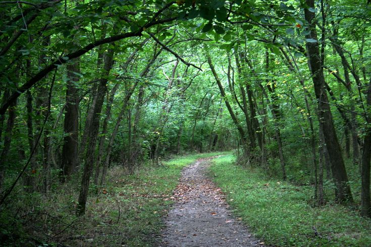 A great way to clear your head and breathe fresh air: Hiking