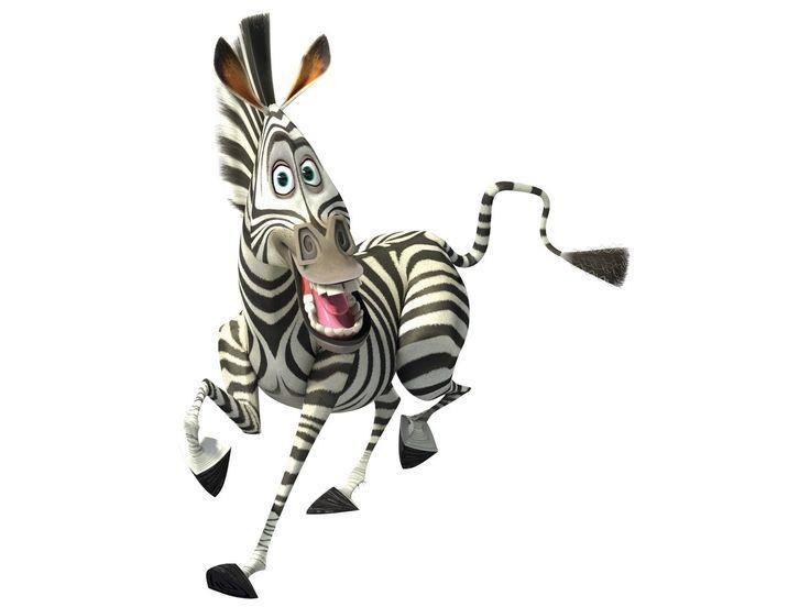 ударение картинки зебра из мадагаскара на белом фоне этого времени начала