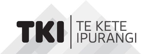 UDL on Te Kete Ipurangi (TKI) Inclusive Education Guides for Schools