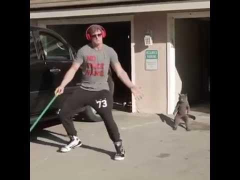 COPY CAT! Video From Logan Paul