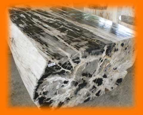 IndoGemstone Petrified Wood Table