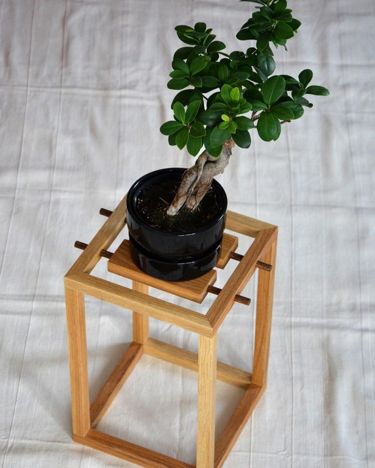 "40 kedvelés, 2 hozzászólás – MyBetterShelf (@mybettershelf) Instagram-hozzászólása: ""Our newest, Japanese-inspired plant stand, made of solid oak. Available here:…"""