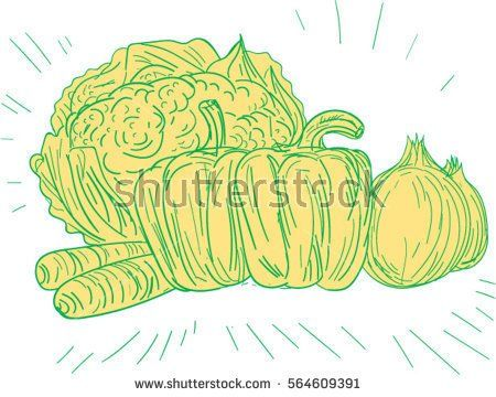 Drawing sketch style illustration of broccoli, capsicum, onion, carrots set on isolated white background.  #vegetables #sketch #illustration