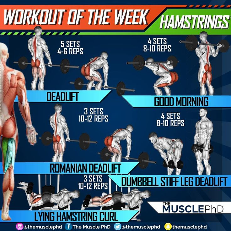 Hamstrings Workout Improve Hamstring Strength And