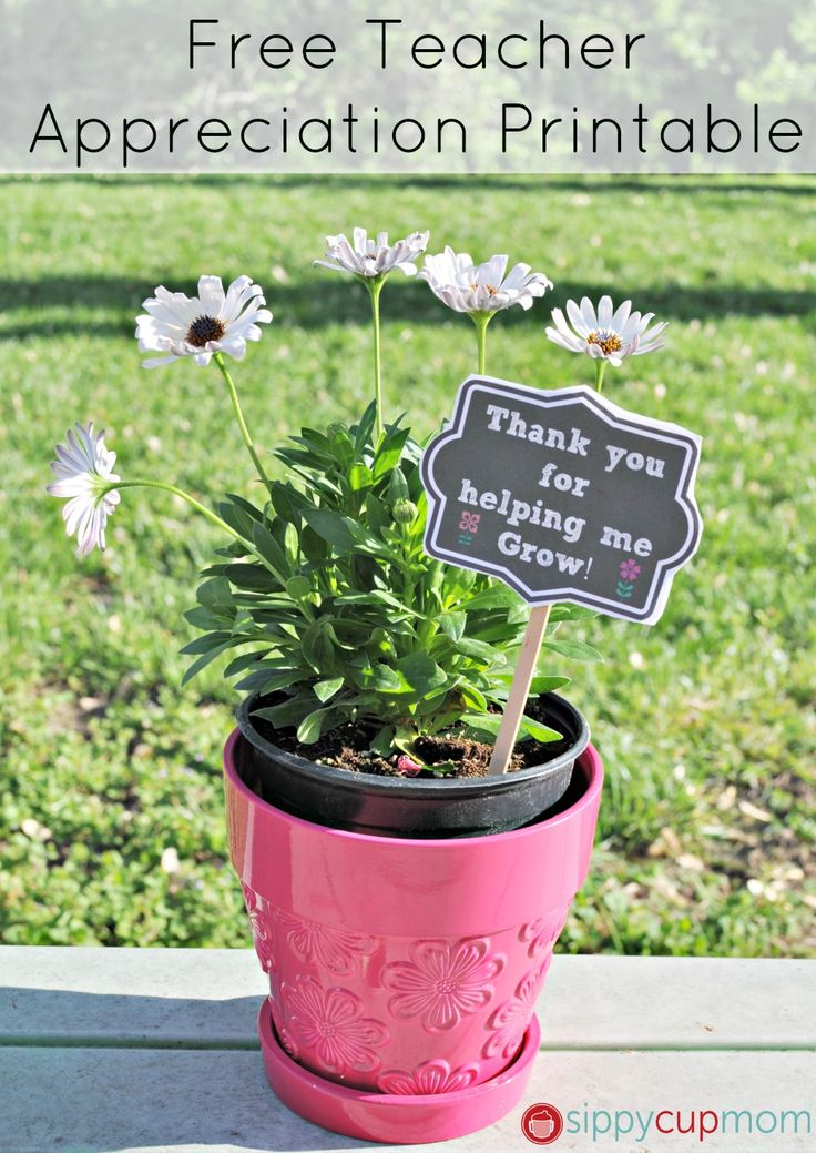 Thank You For Helping Me Grow Printable and Flowers